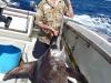 swordfish-in-malindi-kenya