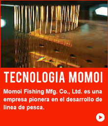 tecnologia de momoi